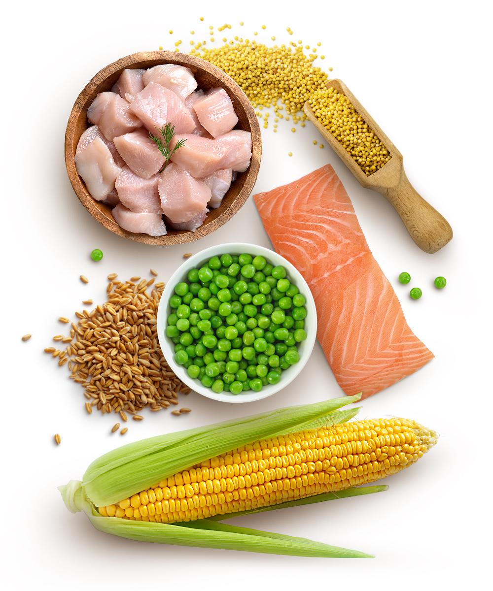Ernährungsphilosophie